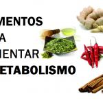 Alimentos para aumentar o metabolismo //